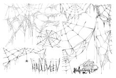 Set of spider web and text of holiday halloween Vector Illustration