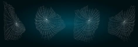 Set of spiderweb isolated. ??obweb vector illustration