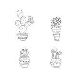 set spiny suckulent typ för kaktusväxt Arkivbilder