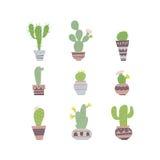 set spiny suckulent typ för kaktusväxt Royaltyfria Foton
