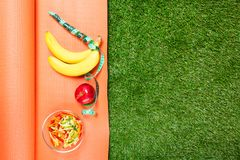 Set of sports nutrition on the Mat , concept on green grass. Set of sports nutrition on Mat , concept on green grass royalty free stock images