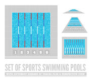 Set of sports swimming pools with different number of tracks plus a perspective view Stock Image
