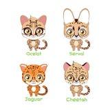 Set of spotted feline species illustration. S vector illustration