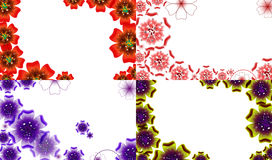 Set of Spring background for the design flowers. Stock Image