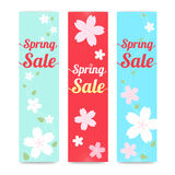 Set of spring banner background with cherry blossom in vertical Royalty Free Stock Photography
