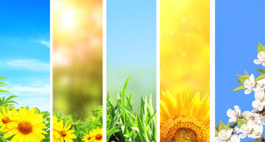 Set of spring banners royalty free stock image