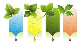 Set of spring  banners with leaves Stock Photography