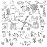 Set of spring doodles. Beginning of spring symbols. Imbolc wiccan holiday sketch doodles. Brigids cross, groundhog, snowdrops, vector illustration