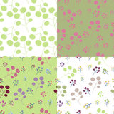 Set spring floral background Royalty Free Stock Photo