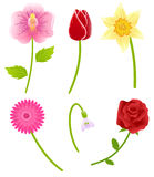 Set of spring flowers stock illustration