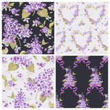 Set of Spring Flowers Backgrounds Stock Photos