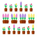 Set of spring flowers. Tulips and hyacinths. Vector illustration stock illustration
