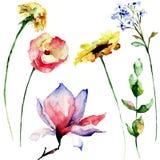 Set of Spring flowers Stock Photos