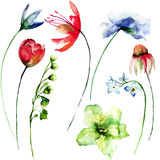 Set of Spring flowers Royalty Free Stock Image