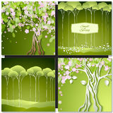 Set of Spring green backgrounds with trees, leaves and flowers Royalty Free Stock Photos