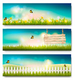 Set of spring nature landscape banners with grass Stock Photography