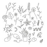 Set of spring plants, flowers and animals. Hand-drawn, black contour on white background Royalty Free Stock Image