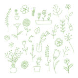 Set of spring plants and flowers, hand-drawn Royalty Free Stock Image