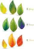 Set of spring, summer and autumn leaves Stock Photo