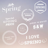 Set of spring typographic design elements Royalty Free Stock Photos