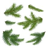Set of spruce branch isolated on white background. Realistic Chr. A set of fir branches. Christmas. vector .Eps 10 Royalty Free Stock Image