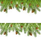 Christmas decorations with fir tree branches. Set of spruce branches with pine cones and snow. Christmas decorations isolated on white background, illustration Stock Illustration