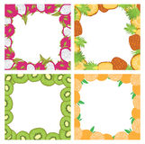 Set of square colored frames composed of delicious fruits kiwi, orange, pineapple and dragon fruit. With space for text. Set of square colored frames composed stock illustration