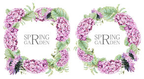 Set of square and round frames with pink asters and hydrangeas drawn by hand with crayons Stock Photos