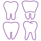 Set of the stabilized teeth Stock Photos