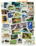 A set of stamps: Animals Stock Photography