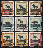 Set of stamps with different animals Stock Photos