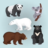 Set of standing, sitting and creeping bears isolated on blue. Royalty Free Stock Images