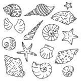 Set of starfish icons, silhouette icon of seashells on white background. Sketches of doodle shells royalty free illustration