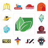 Set of stevia, skull with headphone, jz, travel, taksi, 2 years warranty, neurosurgery, rams, gryphon icons. Set Of 13 simple  icons such as stevia, skull with Stock Images