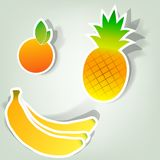Set of  stickers. A set of design elements to advertise fruit Royalty Free Stock Image