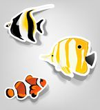 Set of  stickers. A set of tropical fish for advertising diving Stock Photo