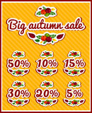 A set of stickers for autumn sale. Big autumn sale. Large discounts. Season discounts. Stickers, labels for sale. Set autumn letters. Letters from the leaves Stock Photos