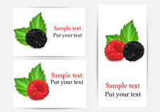 Set of stickers with berries. Set of stickers with forest berries Stock Photography