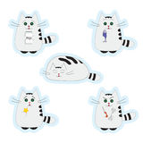 Set of stickers Cats Stock Image
