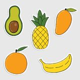 Set of stickers with colorful  hand drawn fruits and vegetables Royalty Free Stock Photography