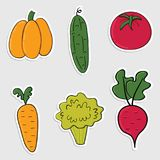 Set of stickers with colorful  hand drawn vegetables Stock Photo