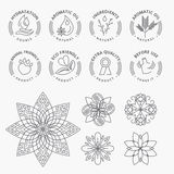 Set of stickers and elements for natural products, beauty and cosmetics Stock Photo