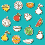 Set of stickers with hand drawn fruits Stock Photos