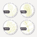 Set of stickers for package design with lovage, lemongrass, chervil, marjoram Stock Image
