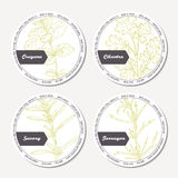 Set of stickers for package design with  oregano, tarragon, savory, cilantro Stock Image