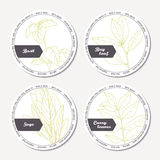 Set of stickers for package design with sage, bay leaf, basil, curry Royalty Free Stock Image