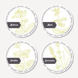Set of stickers for package design withmelissa, mint, lavender, perilla Royalty Free Stock Photo