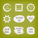 A set of stickers with the text Go Vegan. 100% Natural, Eco, Bio, Vegetarian Food, Veggie, Menu, Organic, Farm, Fresh. White label isolated on green background Stock Photography