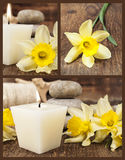 Set of still life with a candle and daffodils Royalty Free Stock Photo