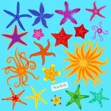 set stjärnor för hav Mångfärgad sjöstjärna Undervattens- ryggradslöst djur för sjöstjärnor också vektor för coreldrawillustration Royaltyfri Fotografi